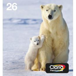 Epson Polar bear Multipack 4-colours 26 EasyMail